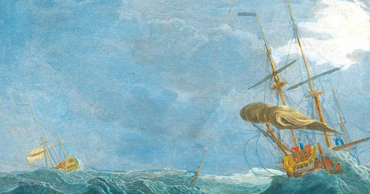 navigazioni pericolose